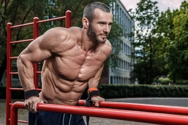 dip-muscles